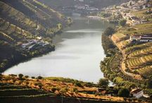 Porto&Douro | Portugal  / The Douro Wine-Region is classified by National Geographic as a 'Sustainable Tourism Destination'.