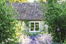 GardenDesigns,Plants, Helpful hints / by Stevie