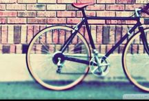 Bicycle passion