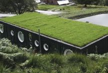 eco homes / by Chanelle Botha