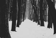 Silence: fuyu (winter)