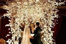 Wedding <3 / by Alina à la Mode