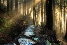 Nature is my church. Come worship and be in communion with us / Beauty Truth & Love are my church