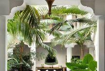 Gardens / Courtyards / Beautiful inspiration for luxury garden and courtyard designs.