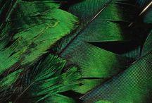 Block color #green
