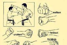 Shitō-ryū Karate-do / Katas, kumite, técnicas, grandes campeones... un poco de todo.