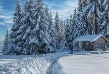 zima / zimní krajina