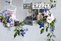 Birdcages and lanterns / Using birdcages and lanterns in a creative way