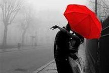 Umbrellas and Parasols / by Jeannette Jackson