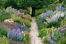 Schöne Gärten - schöne Beete