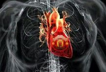 Glory Glory Man United / The greatest footballteam in the world