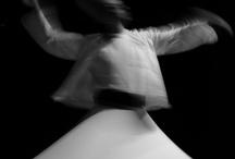 Motion / by Gradiva Bella