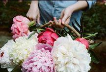 flowers dream / I forever love flowers