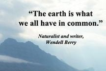 DETOX the World! / Sprüche, Aphorismen und Bilder für ein grüneres Leben -  mit mehr Gemüse, weniger Abfall und mehr Natur!