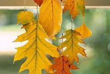 Fall! Festive, Fabulous, Fantastic! / Autumn, harvest, Indian Summer, the 3rd season of the year is fantabulous!!!
