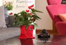 Fiorina Planter Case
