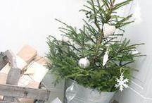 Christmas - beautiful & natural!