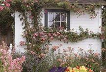 κήπος - garden / Κατασκευές για όμορφο κήπο