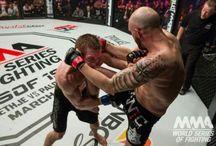 fighting /  KO's,blood, legendary fighters