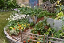 Jardins et décors extérieurs