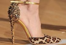 Leopard Obsessed!