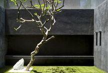 jardins urbains contemporain / jardin