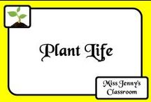 Science: Plant Life / Ideas for learning about one of the most important aspects of our earth - all about the plant life.