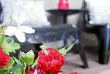 ::: out / Garden ideas
