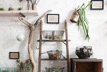 plant ladders