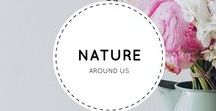Nature Around Us / The beautiful nature scenes around us.