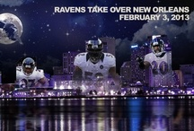 Baltimore Ravens / by Catherine Shook