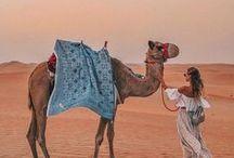 Vibraciones del Desierto.¸¸.✿`