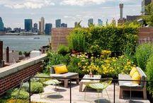 jardí, terrassa