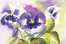 imatges flors