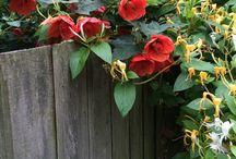 Non solo giardino (multifunctional garden) / Immagini - idee - installazioni Qua e là