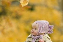 Autumn / autumn, autumnal, autumn leaves, fall colors, fall leaves