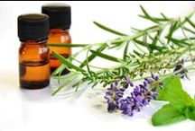 Buy Essential Oils / We supply essential oils Canada, USA and Wordwide. Essential oils wholesale prices with flat rate shipping in North America.