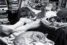 Artists and Cats