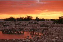 Namibie / Voyages en Namibie