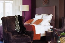 aubergine decor / color inspiration for my living areas / by Deb Patterson