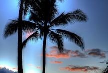 Hawaii / by Christie Nevenhoven
