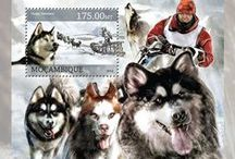 Sled Dogs On Stamps / Почтовые марки #stamps #sled #dogs
