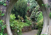 garden / by Rhonda Cosby