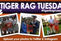 Tiger Rag Tuesday / As part of our Social Summer initiative we'd like to see your pictures!  Upload a photo of you and your friends or family holding up your Tiger Rag on Pinterest, Twitter, or Instagram and tag #TigerRagTuesday!  We'll repin, retweet, and repost our favorites! / by Clemson Athletics