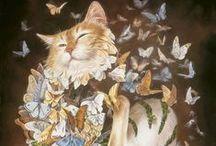 Cats / Cats, I love them!
