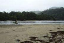Brazil - Ubatuba, Caraguatatuba and litoral paulista / Beaches of Brazil http://cestovanibrazilie.blogspot.mx/2008/10/jak-u-moe-prelo-prelo.html