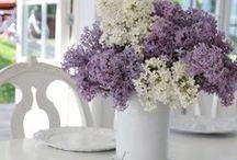 Flowers ♥