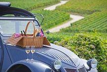 BELEEF   Wijnreizen / Geniet van een heerlijke vakantie tussen de wijngaarden!