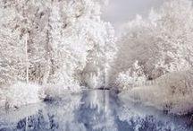 ☃ Winter Wonderland ❄ / Wunderschöne Fotos zum Thema Winter. Einige Fototipps – Wie entstehen tolle Fotos im Schnee: http://blog.foto.at/wie-entstehen-tolle-fotos-im-schnee/