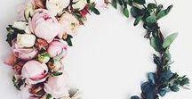 F L E U R / Flowers ✿ ❀ ✾